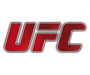 Фигурки по боям UFC