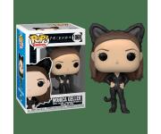 Monica Geller as Catwoman из сериала Friends
